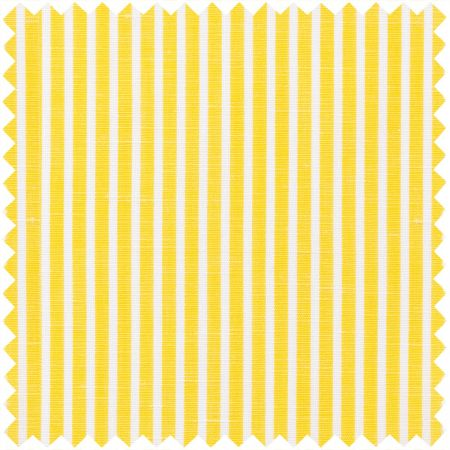Zephirlino in Yellow and White Stripe