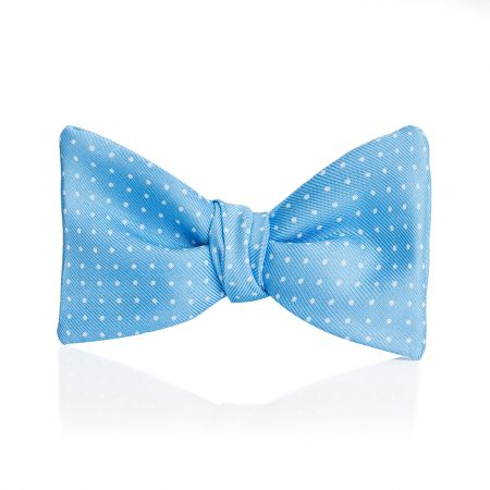 Mini Spot 2.5 Inch Thistle Bow Tie in Sky and White