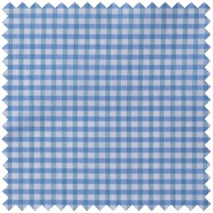 Poplin Large Gingham in Sky and Green