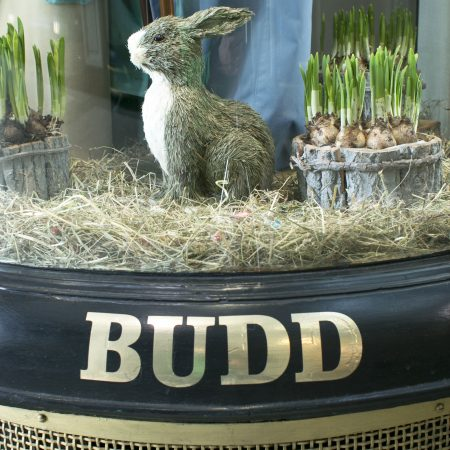 Spring has sprung at Budd
