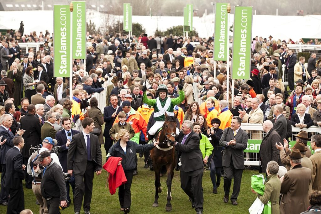 Jockey on horse at cheltenham