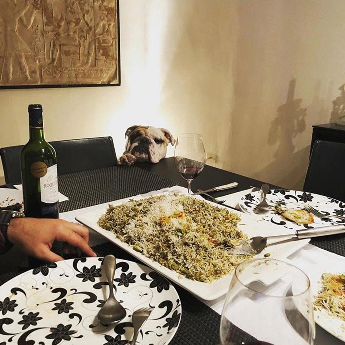 Kian Thanksgiving